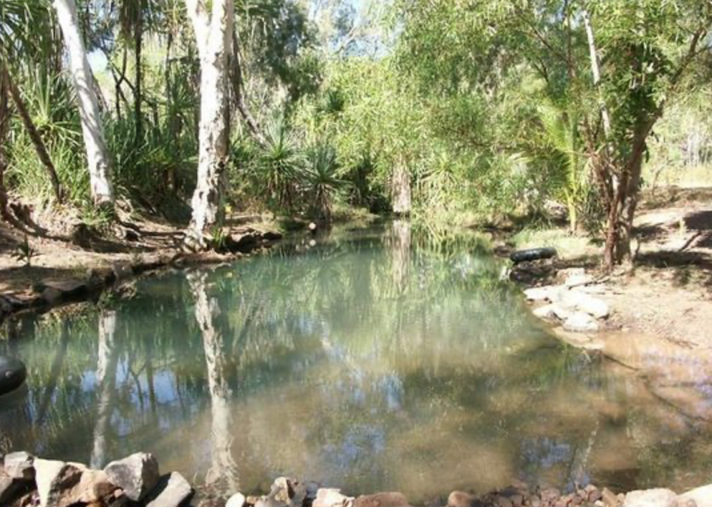 Hot spring swimming hole at Lorella Springs Wilderness Park, Northern Territory